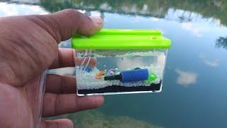 WORLDS SMALLEST Fish AQUARIUM! (REAL)