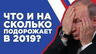 Что подорожает в 2019? Инфляция в России. Прогноз роста цен