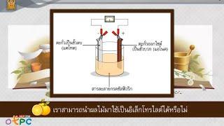 สื่อการเรียนการสอน แหล่งกำเนิดไฟฟ้ากระแส ตอน เซลล์ไฟฟ้าเคมีจากผลไม้ ม.3 วิทยาศาสตร์