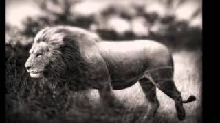 Charlie Haden & Pat Metheny -Spiritual