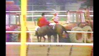 1981 Belmont Stakes - Summing : CBS Broadcast