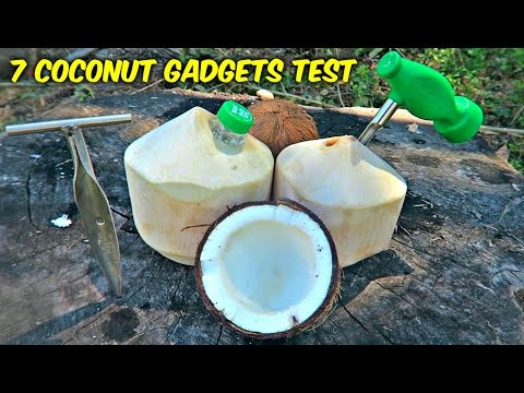 7 Coconut Gadgets put to the Test
