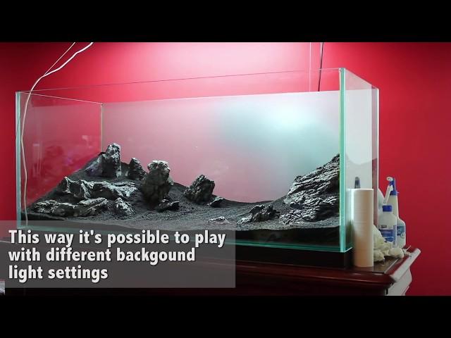 Green&Grey Aquarium Step-by-Step (Day 0) ADA Style