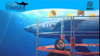 DIA 2 Expo Tiburon105