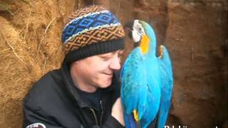 Papige v Tropskem raju Vrtnega centra Kurbus