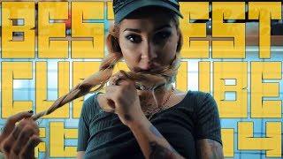 ЛУЧШИЕ ПРИКОЛЫ ЗА АВГУСТ 2018!(BEST CUBE,COUB,VIDEOS)#64
