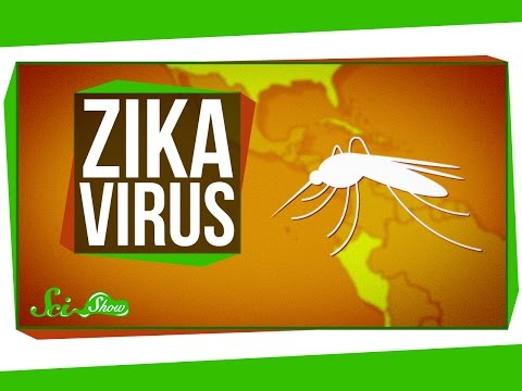Video Zika Virus: What We Know (And What We Don't)