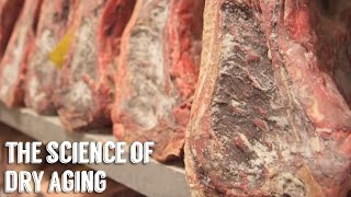 """""""Science of Dry Aging"""" by George Motz"""