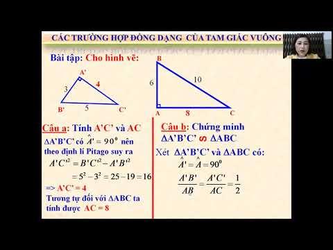 Toán 8: Các trường hợp đồng dạng của tam giác vuông