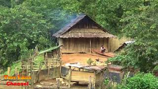 Hmong Farmer & How They Live Off The Land  @ Laos 2018