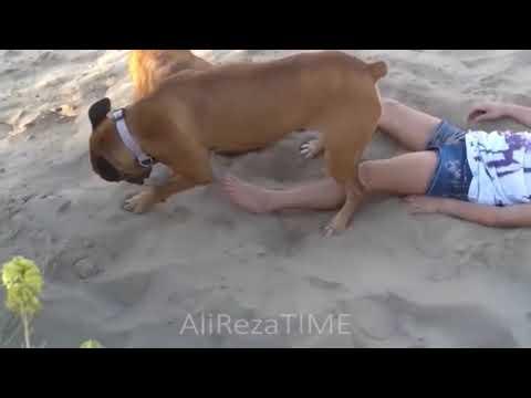 Girl vs dog