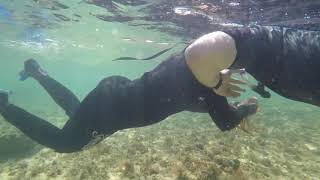 preview picture of video 'Snorkeling adventure at Kamalame Cay'
