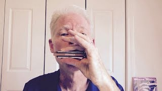 5 cool riffs for beginning blues harmonica players