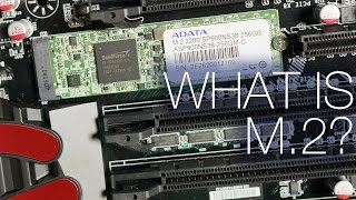 What is M.2? PCIe SSDs Explained. ft. ADATA SP900 M.2