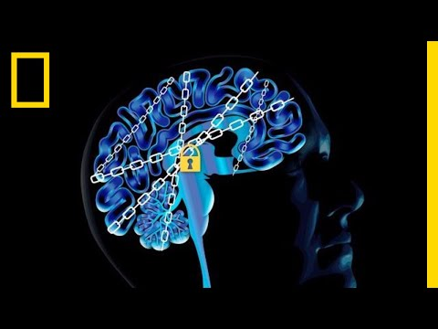 The Science of Addiction: Here's Your Brain on Drugs | National Geographic