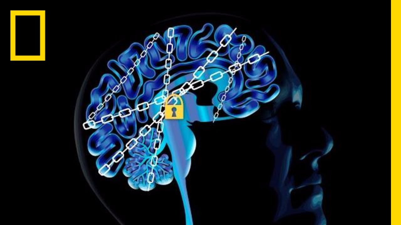 The Science of Addiction: Here's Your Brain on Drugs   National Geographic thumbnail