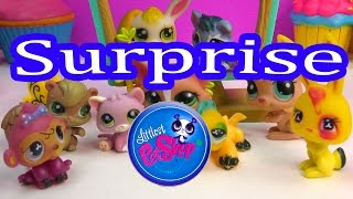 LPS 10 Random EBAY Littlest Pet Shop Lot Mystery Surprise Pets Haul Online Review Unboxing