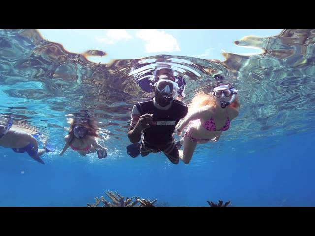 Belize Barrier Reef Snorkeling with Hamanasi - Bruce and Barbara
