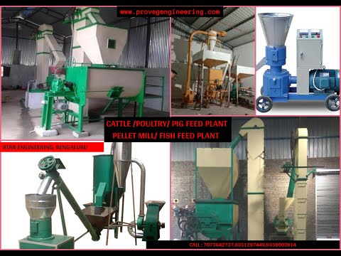 Sinking Fish Feed Making Machine