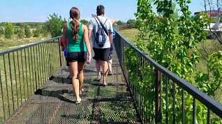 Удивительный парк львов Тайган. Крым 2018