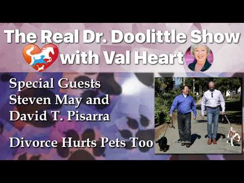 Divorce Hurts Pets too, Steven May and David T Pisarra | The Real Dr. Doolittle Show | Podcast#88