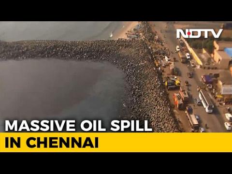 Chennai Oil Spill Touches Marina Beach,
