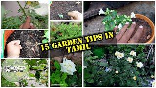 15 Gardening Useful tips ( தமிழ் )