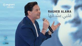 تحميل اغاني Ragheb Alama - Albi Ashe2ha (remake version) - راغب علامة - قلبي عشقها MP3