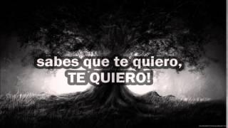 The world Alive ~ You're All I See (Español)