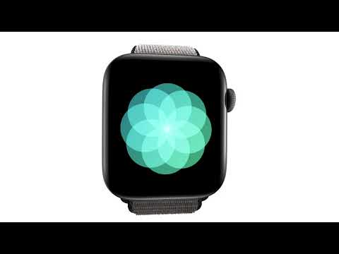 Apple Watch Series 5 en iShop