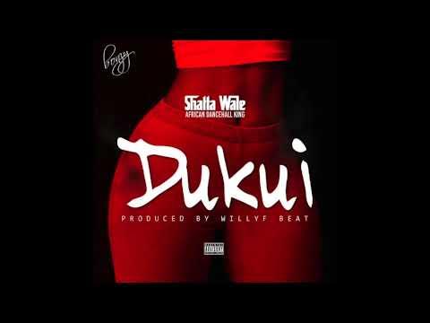 Audio: Shatta Wale - Dukui
