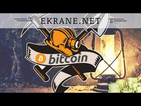 Ekrane.net отзывы 2018, mmgp, обзор, ключ регистрации, выплаты bitcoin из MINING System