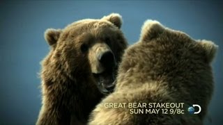 Great Bear Stakeout   Sun May 12 9 8c