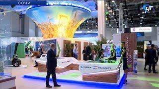 Новгородская область принимает участие в Российском инвестиционном форуме в Сочи