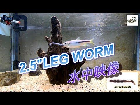 "HAMA TV ~Gary Yamamoto [2.5""LEG WORM]~"