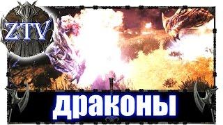 Скайрим Моды на Русском: Драконы Скайрима \\ ZTV