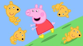 Peppa Pig Official Channel | Peppa Pig's Teddy Rolls Down the Hill