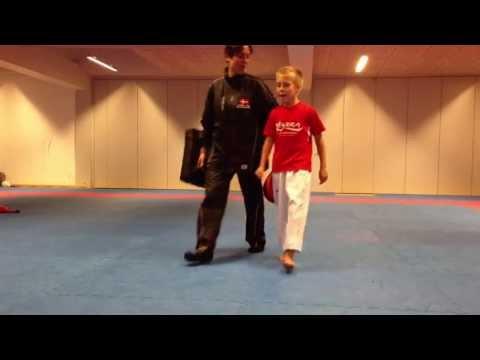 jesse van thuyne taekwondo