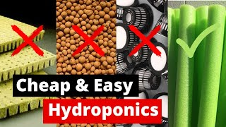 Cheap & Easy DIY Hydroponics | Ditch the expensive stuff for a $1 Pool Noodle