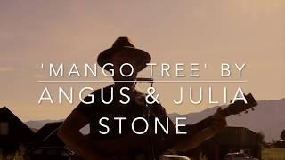 Mango Tree - Angus and Julia Stone (Acoustic Guitar and harmonica cover)