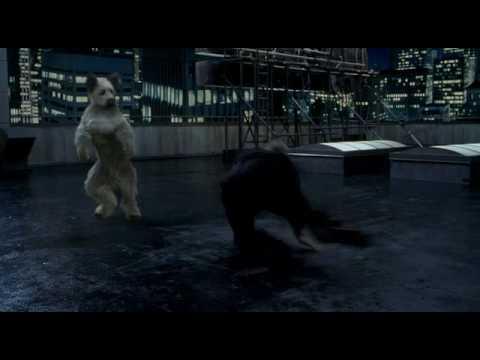 Karate Dog klip 5 - Karate Dog vs Jon Voight