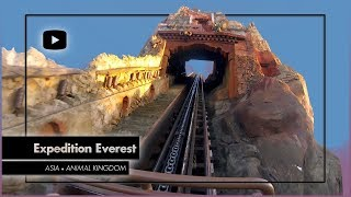 Expedition Everest (Full Ride) POV, Animal Kingdom, Walt Disney World