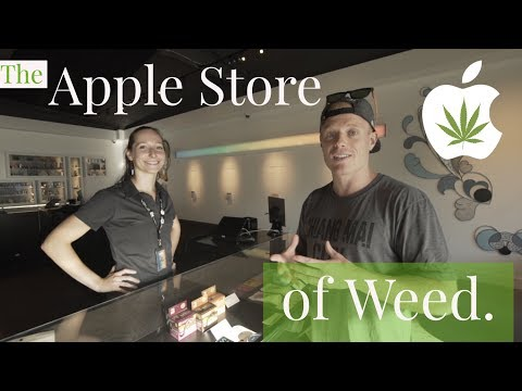 mp4 Recreational Dispensary, download Recreational Dispensary video klip Recreational Dispensary
