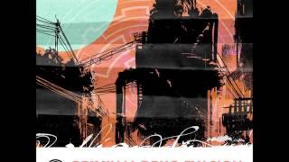 Shanti Matkin -  Criminal Drug Evasion [Full EP]