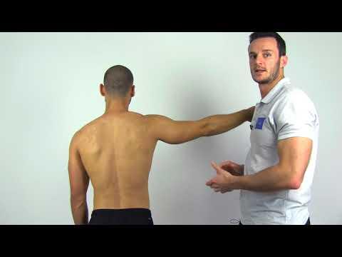 Drop Arm Test / Sign   Supraspinatus Tear