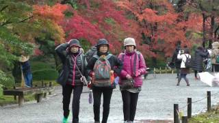 日本旅遊金澤兼六園