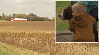 Loyal Dog Stays With Little Boy Who Was Lost in Cornfield For Hours