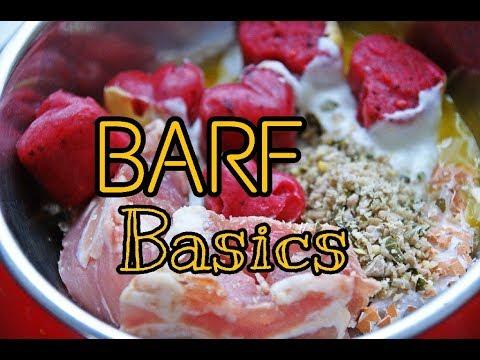 Barf Basics | Barf für Einsteiger | So ernähren wir unsere Hunde