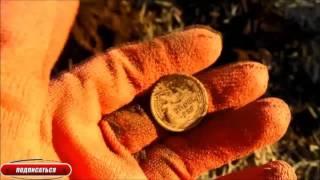 Коп в Оренбургской области приносит монеты.Minelab Safari