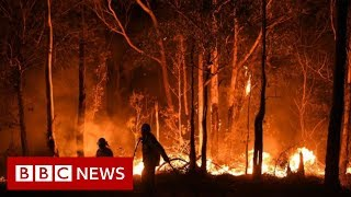 Australia fires: Rain brings relief but huge blazes expected - BBC News